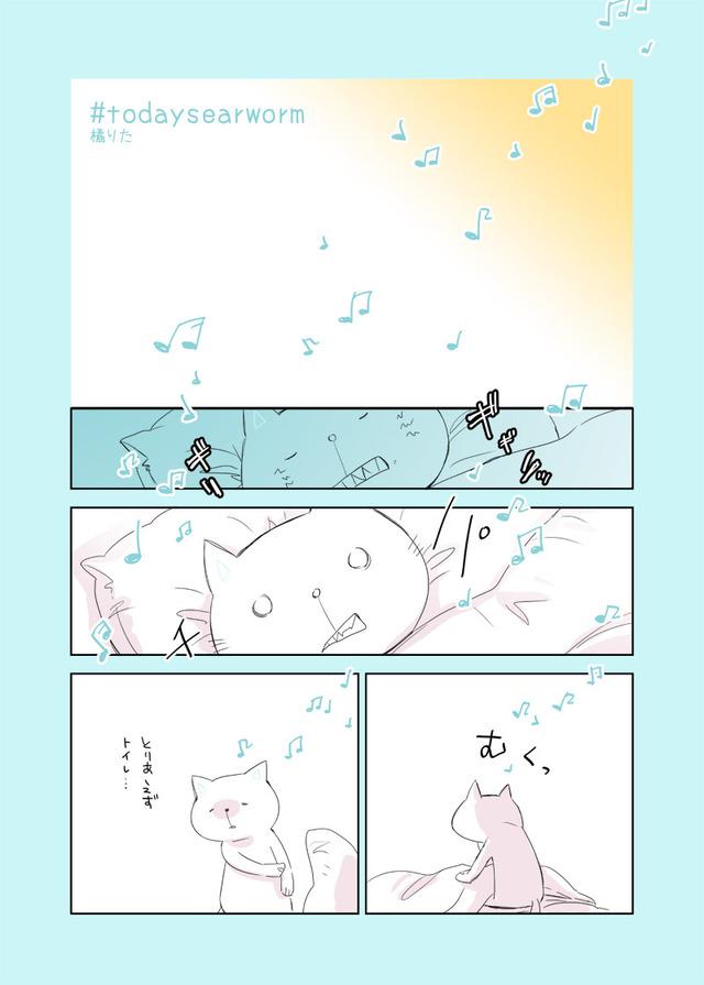 nekoh_20160916-01