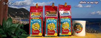 lion-ttl
