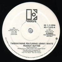 Twennynine Featuring Lenny White 1981 Elktra