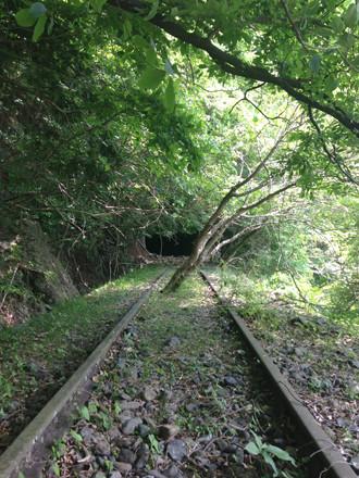 小河内線の木