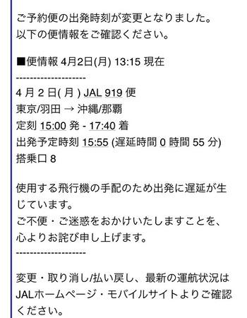 313  JAL遅延