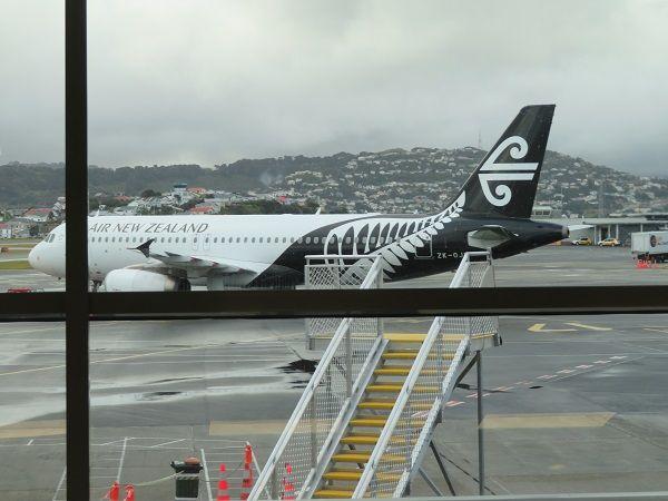 95 ニュージーランド
