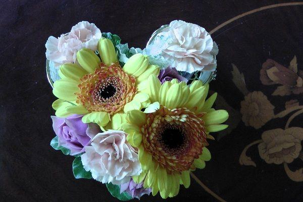 295 スペチの花
