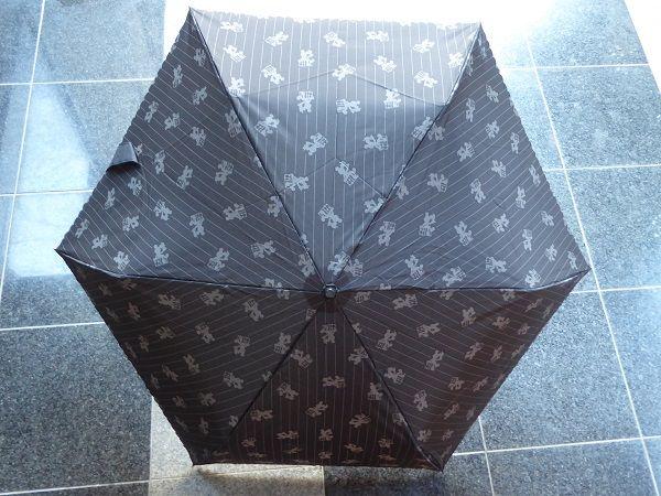 315 バケパ日傘