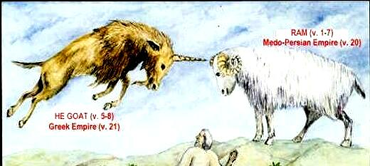 0daniel8 male goat against ram
