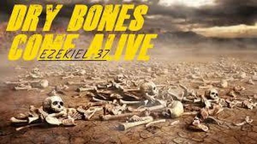 0vally full of bones