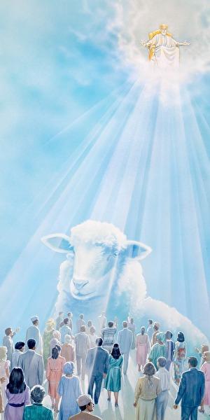 0jesus and sheep