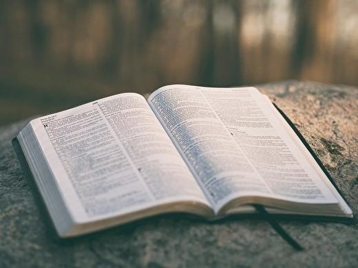 0open bible9