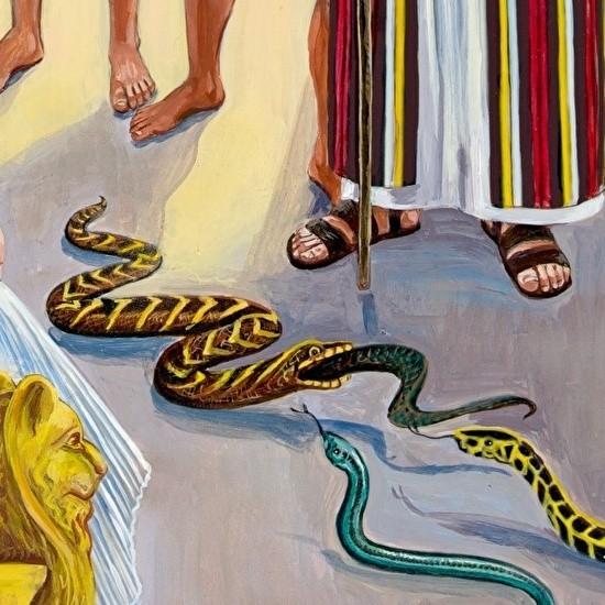 0magician snake