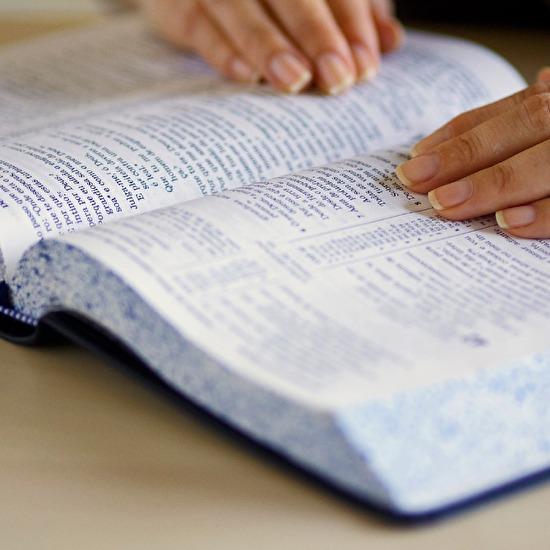 0open bible8