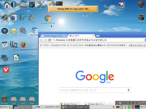 Chrome(15)