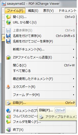 SnapCrab_sasayama02 - PDF-XChange Viewer_2015-5-1_12-28-53_No-00