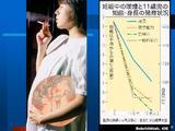 妊婦喫煙と知能