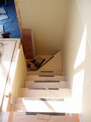 階段・100301 (3)
