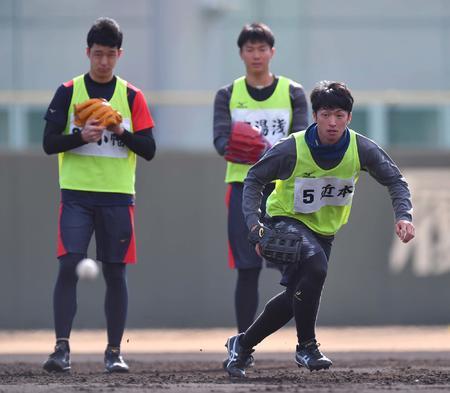 阪神・ドラ1近本、高山の守備に驚き「ボールまでの速さが違う」