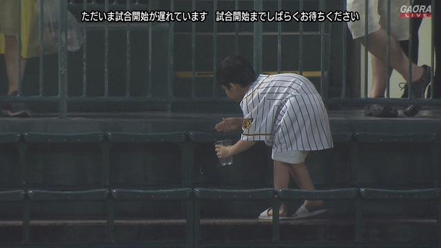 座席の雨水をコップに集める阪神キッズwwww