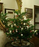 Weihnachtsbaum 2010 in Pension 大