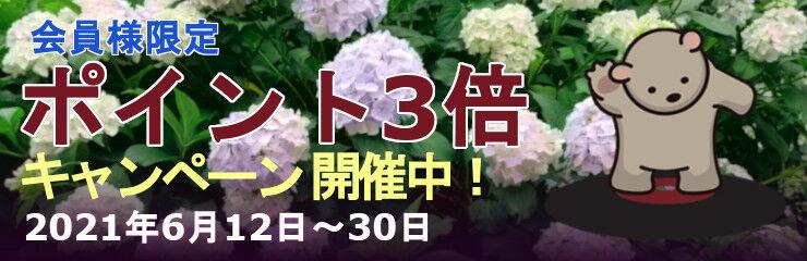 point3bai202106_240_kaisai