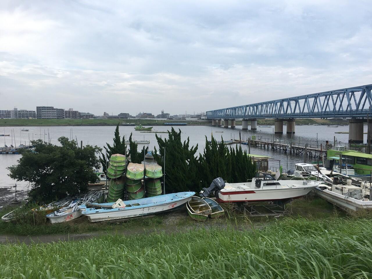 江戸川 放 水路