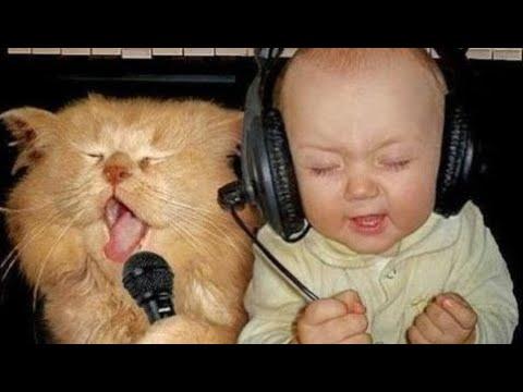 【犬猫動画】「猫と赤ちゃん」最高におもしろ猫と赤ちゃんのハプニング集・思わずに笑っちゃう 2017  - 長さ: 10:37。