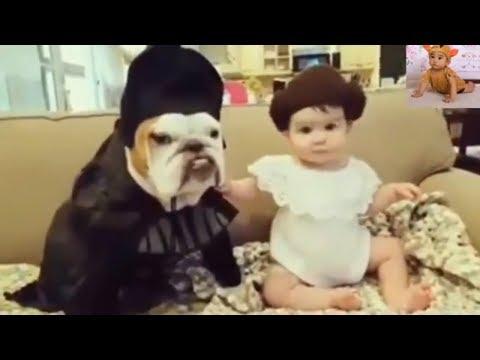 【犬猫動画】最高におもしろ犬と赤ちゃんのハプニング集。めっちゃかわいい #7  - 長さ: 11:04。