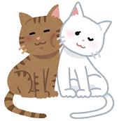 nakayoshi_cats_couple170