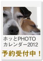 offcm-banner-01