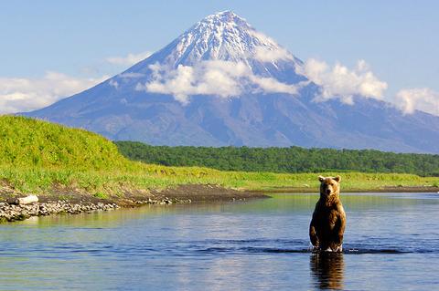 kamchatka-with-bear