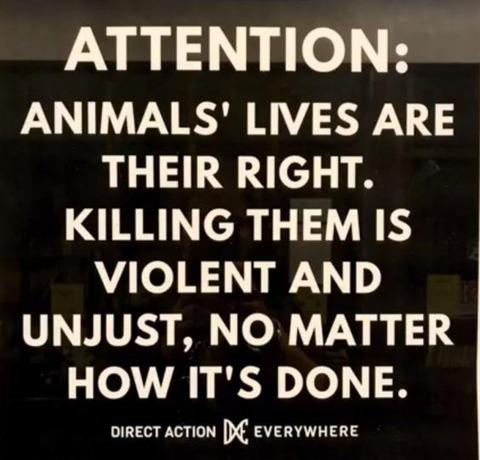 vegan-butchers