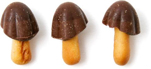 20130522-taste-test-kinoko-pieces