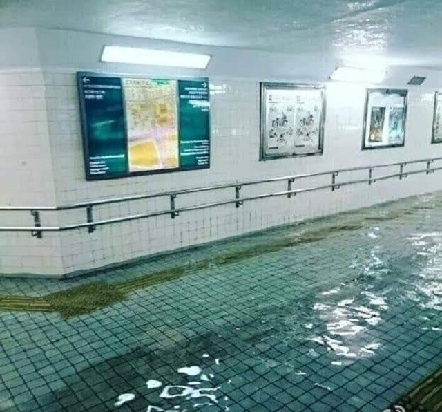 flood-in-japan-is-cleaner-than-my-local-public-swimming-pool
