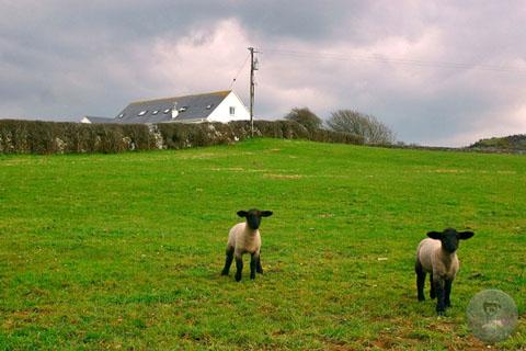 ierland-2004-ejl-lahinche1
