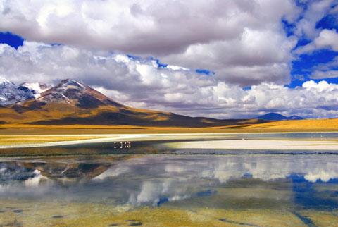 Bolivian-Landscape