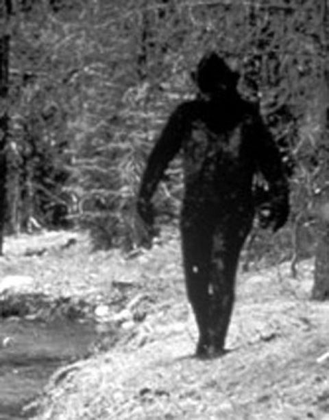 413875-bigfoot-in-the-territory