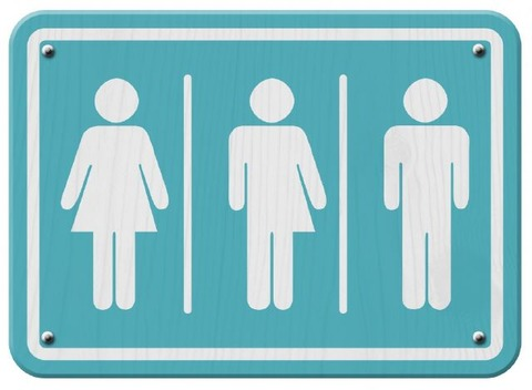 18795599_judge-tosses-trans-ban-rules-trump_80451fe3_m