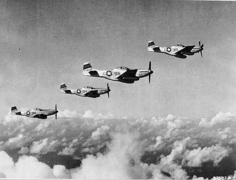45th_Fighter_Squadron_-_P-51_Mustangs