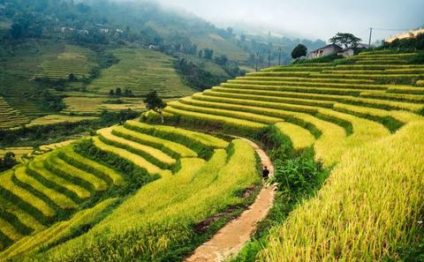 vietnam-825x510