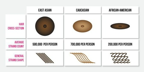 race-differences-in-hair-types
