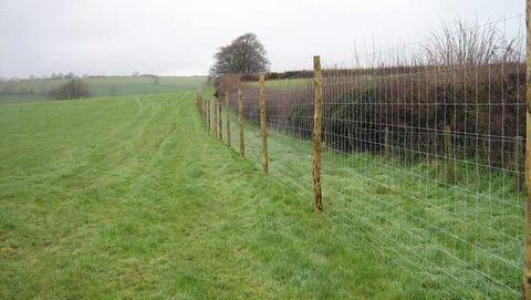 deer_fencing