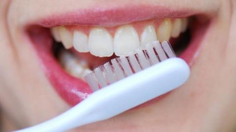 Brush-Your-Teeth-2