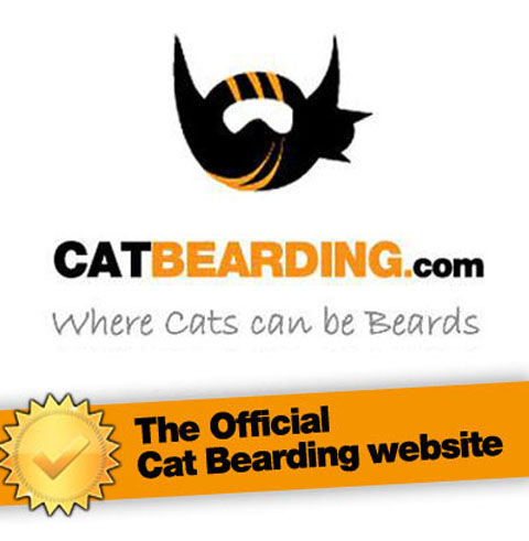 the-official-cat-bearding-website-has-100s-3702-1369710070-1