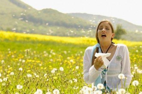 allergies-e1379099584908