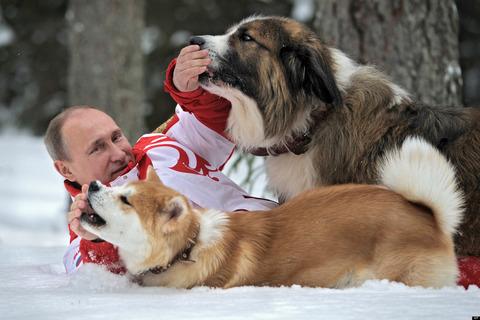 o-VLADIMIR-PUTIN-DOGS-facebook