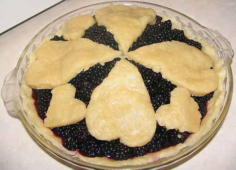 800px-Blackberry_Pie_956px