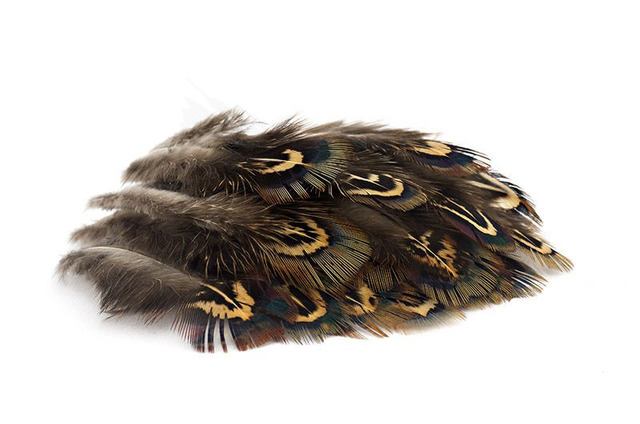 troutline-selected-pheasant-body-feathers-for_tying