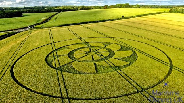 Crop Circle Owlesbury June 2109