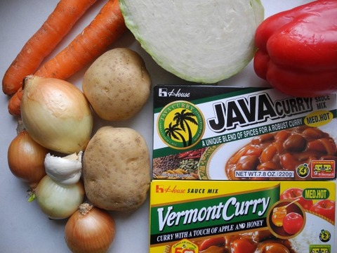 Japanese-Curry-600x450