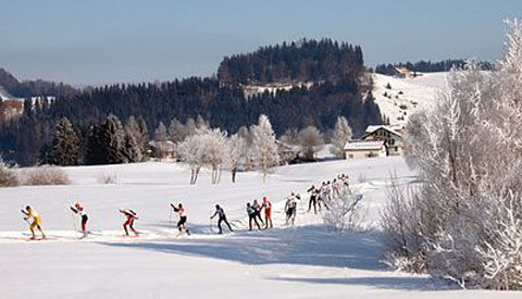 400px-Cross-country_skiing_Schwedentritt