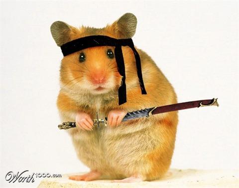 ninja_hamster_by_demoniumangel-d32j10u