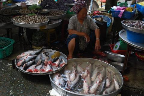 1920px-Basa_fish_-_Vinh_Long_Market